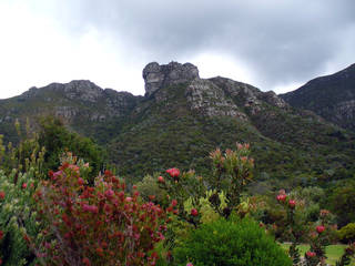 Kirstenbosch National Botanical Garden © Andrew Massyn