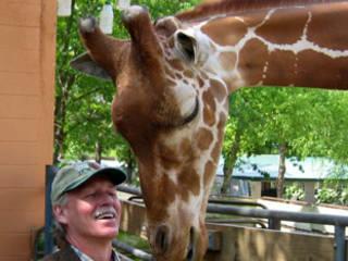 Little Rock Zoo © Little Rock Zoo