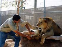 Southern Nevada Zoo © Southern Nevada Zoo