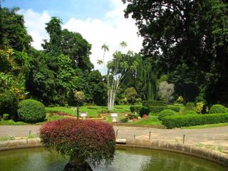 Royal Botanic Gardens Peradeniya  © mckaysavage